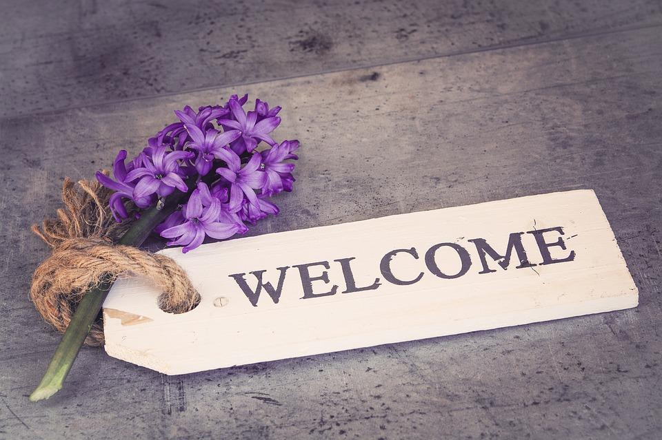 hyacinth-1398839_960_720